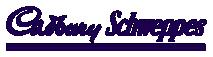 Cadbury Schweppes