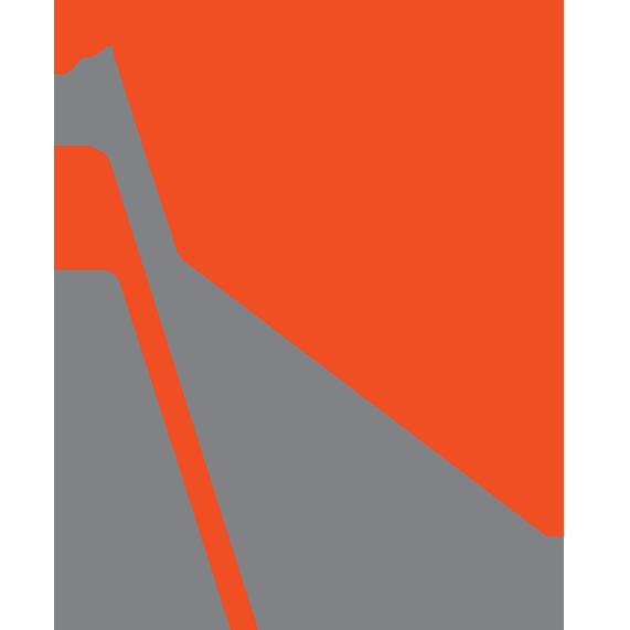 FC_flag