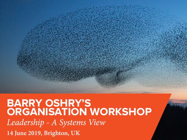 Barry Oshry's Organisation Workshop by Future Considerations 2019